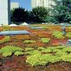 Nopová fólie Guttabeta T20 garden 4