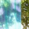 Sklolaminátová role zelená Gutta Guttagliss PES - průsvitnost
